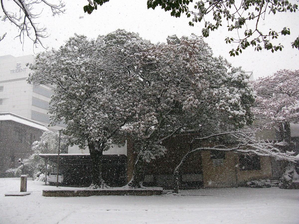 2012-02-02 022