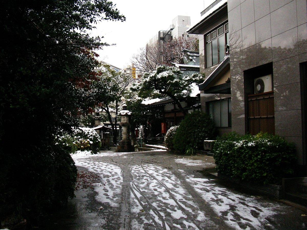 2011_12_26 005