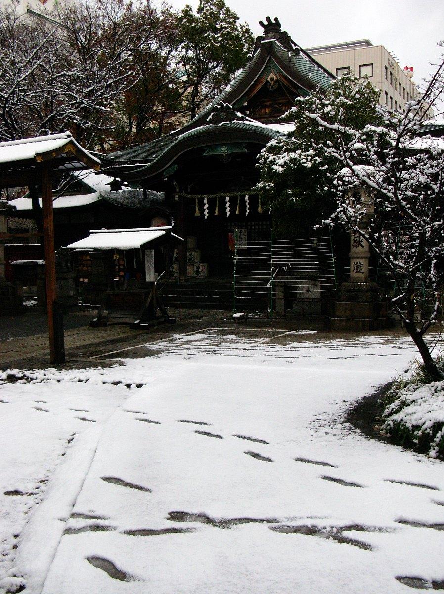 2011_12_26 008