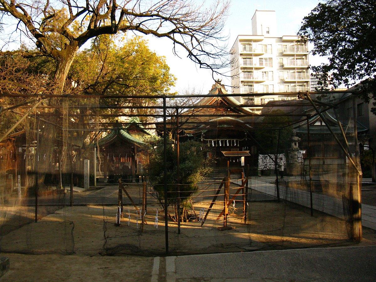 2012-01-10 001