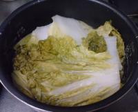 白菜ハンバーグ04