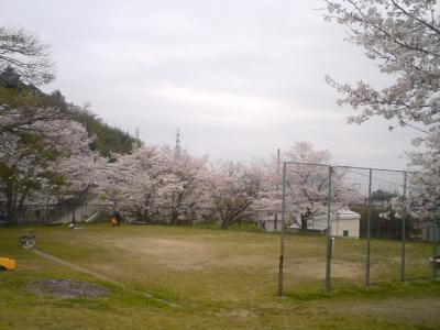 桜の地蔵公園03