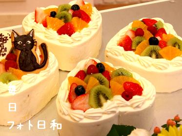 IMG 7706 ケーキ
