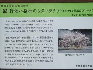野依八幡神社枝垂れ桜 011