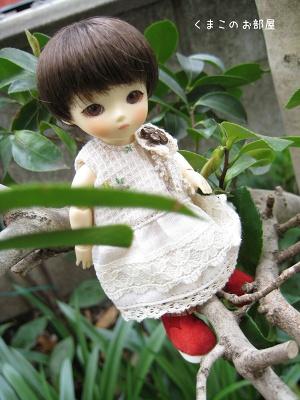 木登りちよちゃん