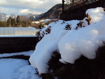 雪の景色 2