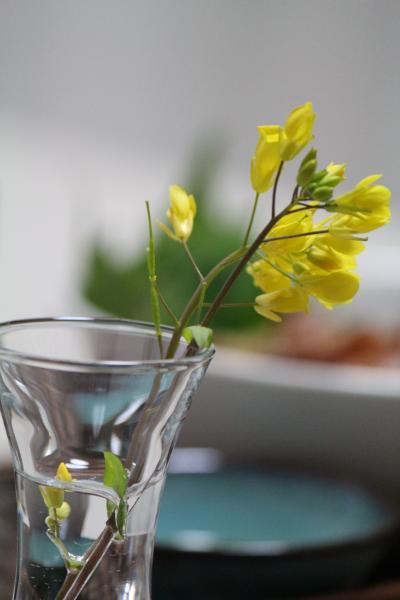鶏 たたき 菜の花
