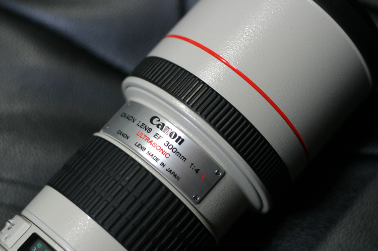 EF300/F4LUSM