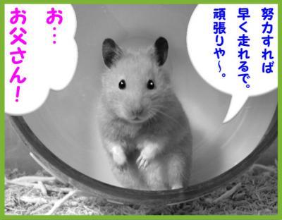 日記3・15爆走マンガ3