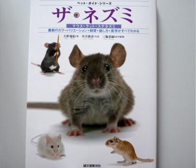 日記5・11ネズミの本1
