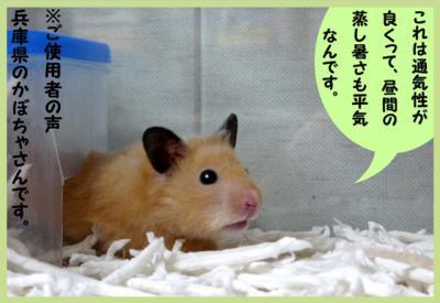 日記6・9夏用巣箱3