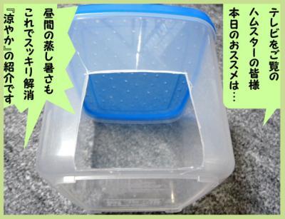 日記6・9夏用巣箱1