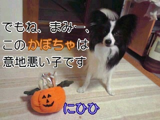 悪いかぼちゃ。