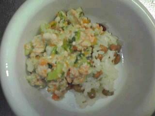 納豆ご飯と鮭