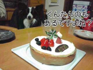 おケーキある?