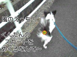 風のえっち!