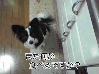 また食べるのか。