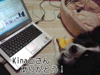 kinaとさん!うるうる♪