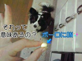 ボーロにON☆