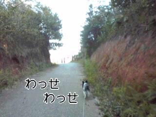 大仏山公園1