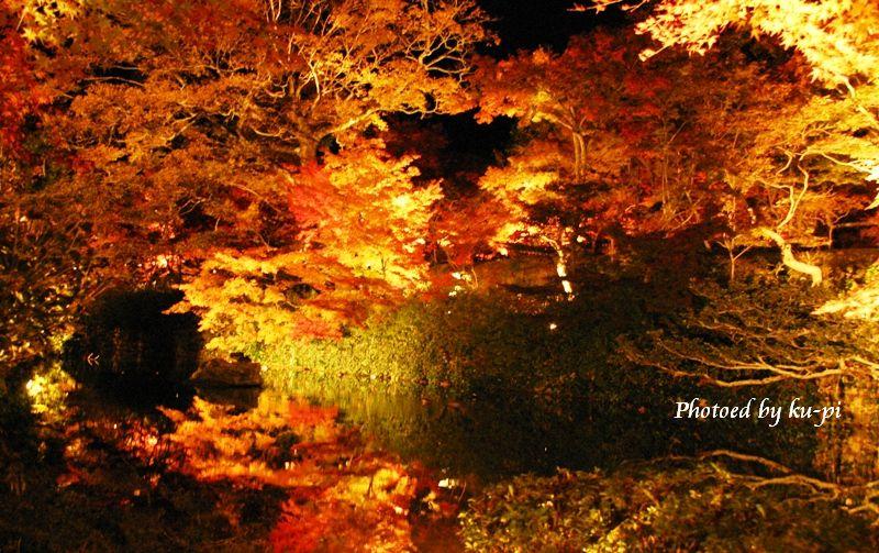 紅葉と湖面2