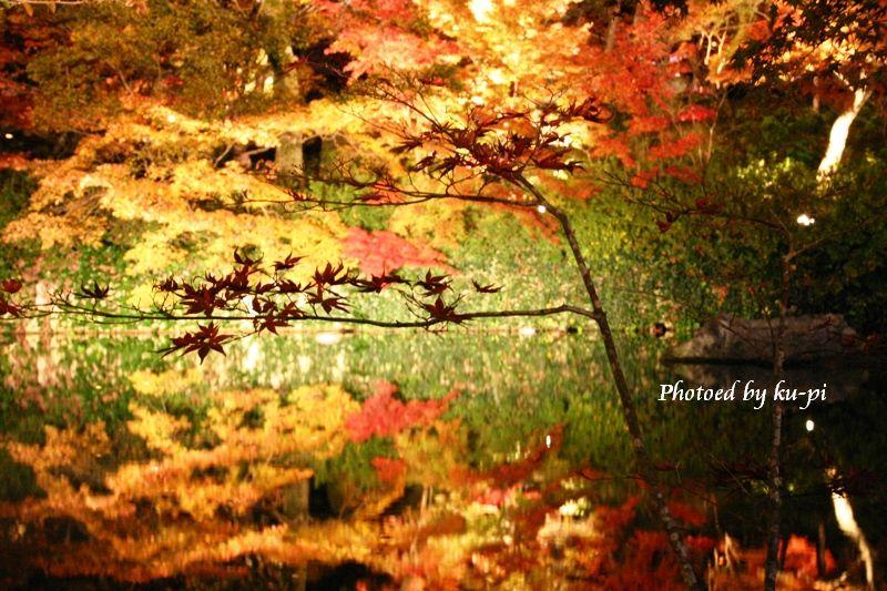 紅葉と湖面