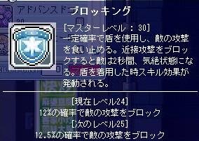 ms20090305f.jpg