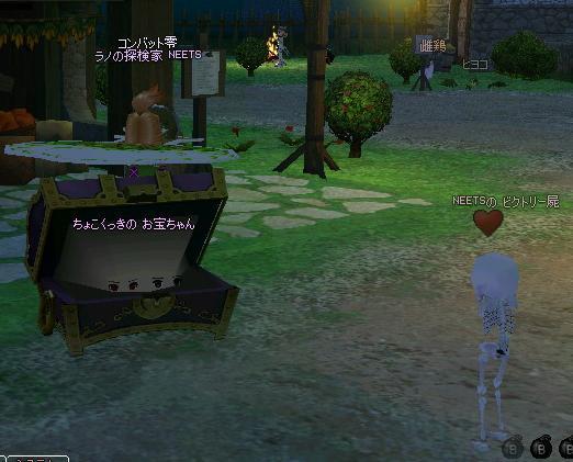 mabinogi_2008_10_25_005.jpg