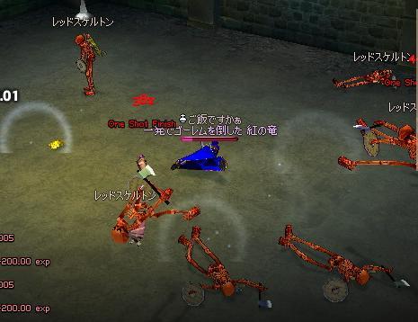 mabinogi_2008_10_29_002.jpg