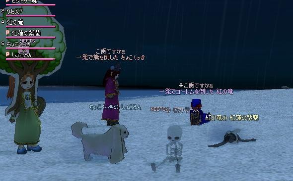 mabinogi_2008_11_02_004.jpg