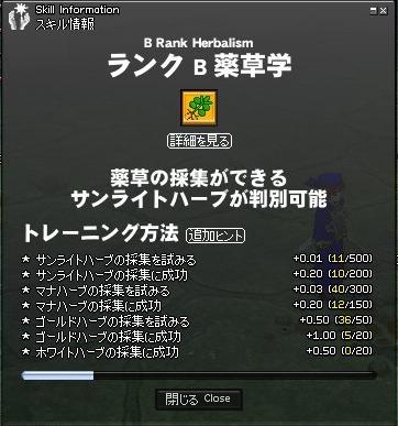 mabinogi_2008_11_14_002.jpg