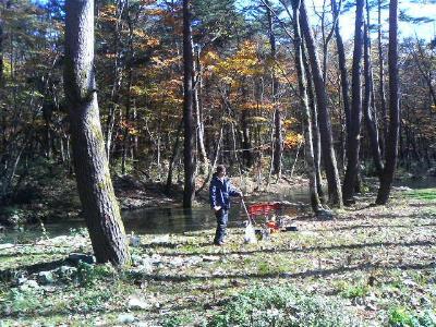 林にたたずむ