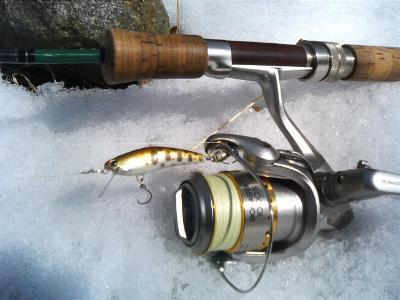 バルサ40mm(アマゴカラー)