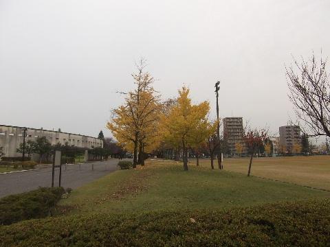 gohuku1128-1.jpg