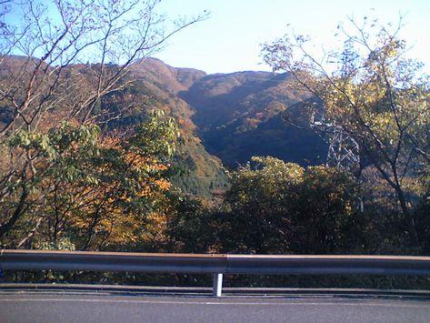 箱根の紅葉、これからか