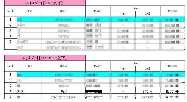 ルアーコーシング 09.7.4 エキスパート