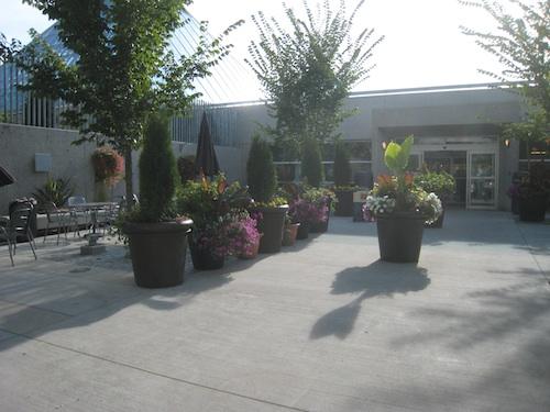 ムタート植物園