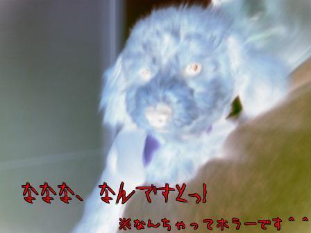 F0Cq2AK_.jpg