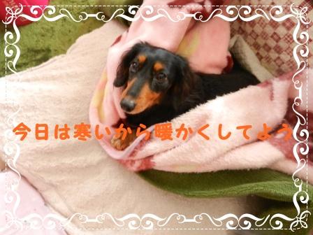 DSCN0574.jpg