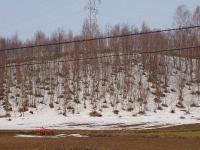 山には雪が積もってる・・・