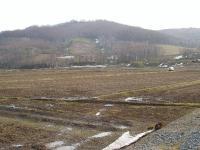 東側の山と田んぼ