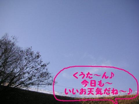 1-10-1.jpg
