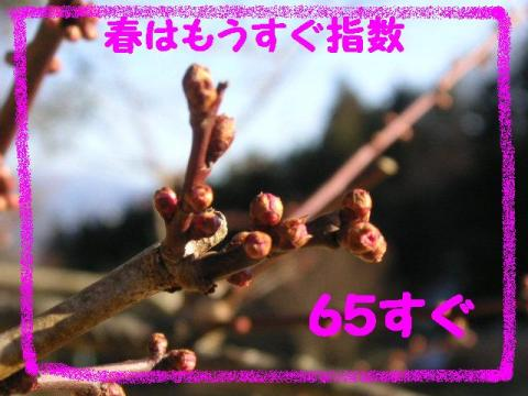 2-28-13.jpg