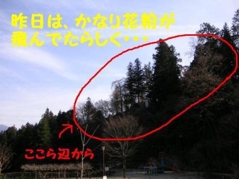 3-16-6.jpg