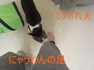 IMG_7556ぼん