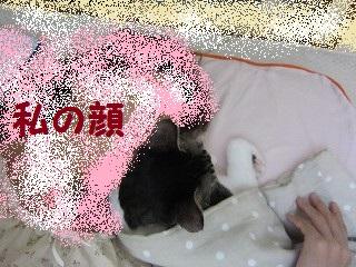 IMG_7723ぼん