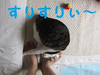 IMG_6233すりすり