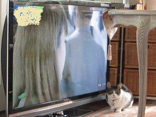 IMG_9029テレビ