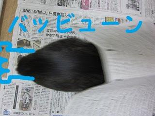 IMG_7030バッビューーン
