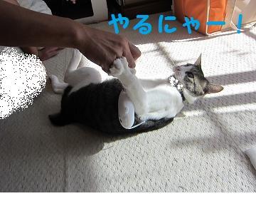 IMG_9266かぷお!